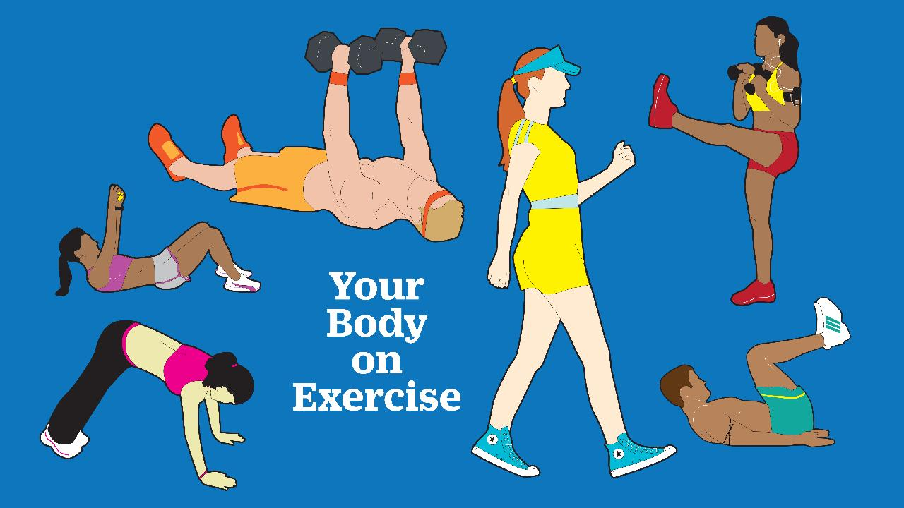 You Can Get Great Results With an Online Personal Trainer